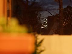 夜はライトアップされた熊本城を眺めながらお酒やお料理を楽しめます。デートにもバッチリ!