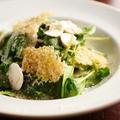 料理メニュー写真ルッコラ、豆苗、マッシュルーム アンディーブのサラダ・メスクラン