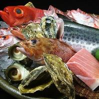 本日の美味しい新鮮鮮魚