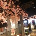 テーブル席を多数ご用意♪ただいま、店内を桜で装飾中♪