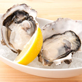 料理メニュー写真生牡蠣 1個