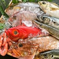 感謝のSASIMORIはここから始まる…新鮮な魚達☆