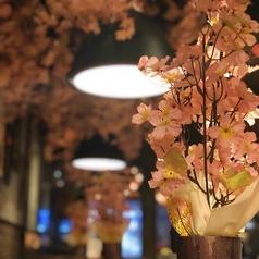 きれいな桜の内装は見物です!