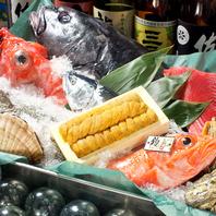 厚岸・小樽・函館・稚内等、道内各地から直送の新鮮魚介