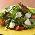 料理メニュー写真道産モッツァレラと知内昆布の塩昆布サラダ