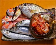 料理長目利きの鮮魚