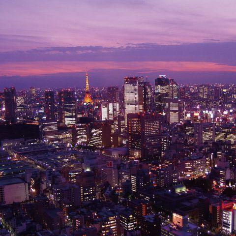 レストラン業態でこの高さのテラスに出られるのは当店だけです。東京の夜景をほぼ360°見渡す事ができます。一見の価値有りです!