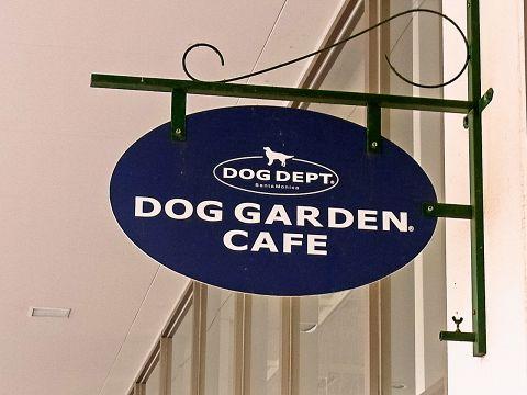 愛犬と一緒にくつろげるカフェ★デザートやワンちゃん用のメニューも豊富♪