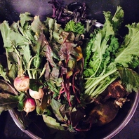 安心安全な野菜。生産者さんの熱い思いをお届けします