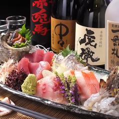 おいしい魚とこだわりの酒 とっちゃばの特集写真