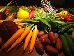料理メニュー写真今日の野菜