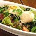 料理メニュー写真豚しゃぶサラダ/とろろ芋と豆腐のうま塩サラダ/ふわとろ卵とポテトサラダ