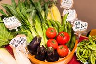 新鮮野菜も盛りだくさん