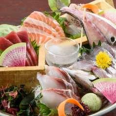 魚と日本酒 季ノ膳の特集写真