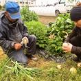 徳島県名西郡の契約農家直送の新鮮な野菜を使用♪