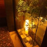 三田菜の雰囲気2