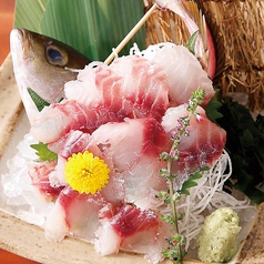 料理メニュー写真本日の鮮魚姿造り