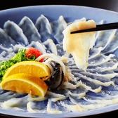 ふぐ一郎 なんばのおすすめ料理2