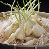 「究極のニンニク」は匂いが気にならないスタミナ料理!!