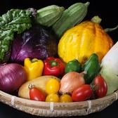 ヘルシーなお野菜もたくさん入荷しています♪