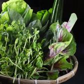 中国野菜は提携農家さんから直送してもらっています★