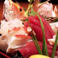鮮魚そろえてます☆