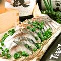 料理メニュー写真【炙り〆鯖】