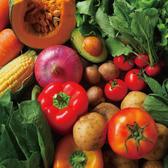毎朝市場直送のお野菜をお届けします。新鮮な味わいをお愉しみください。食べ放題でご堪能できるコースもご用意あり!