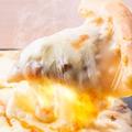 料理メニュー写真溢れるチーズピッツァ