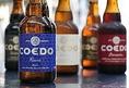 【厳選ドリンク】川越のクラフトビールCOEDOビールもご用意!