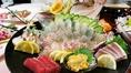 【天草から直送】当日の朝に仕入れた新鮮鮮魚
