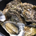 料理メニュー写真生牡蠣