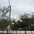 【ポンドまでの道のり♪】「中比恵公園」を左側にまっすぐ進む…