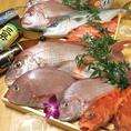 【壱岐の鮮魚】壱岐直送!オーナーが釣った魚です♪
