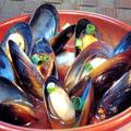 料理メニュー写真ムール貝の漁師風<トマト煮込み>