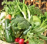地元横浜から始まり神奈川県で育つ食材を使用