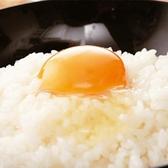 とり鉄 赤坂店のおすすめ料理3
