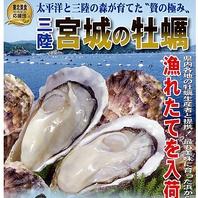 1年中、生カキ食べられます!!抜選された大粒牡蠣堪能
