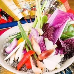 農園野菜氷山盛り(のうえんやさいひょうざんもり)