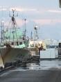 金沢港から直送の鮮魚を各種ご用意させて頂きます!