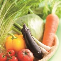 新鮮な国産野菜