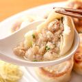 料理メニュー写真究極の肉汁餃子