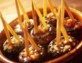 料理メニュー写真マッシュルームの生ハム詰めもの焼き