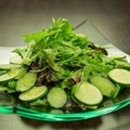 料理メニュー写真有機ベビーリーフのグリーンサラダ