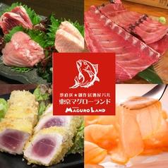 東京マグローランド 八王子本店の写真