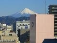 空気が澄んだ日は富士山が見えます♪