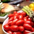 大分県で獲れた新鮮なお野菜、お肉、魚介類を使ったイタリアンをリーズナブルに…