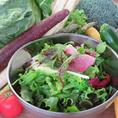 サラダ食べ放題♪単品注文の方はお通しサラダ(380円)が食べ放題!旬の季節のお野菜が色とりどりに入っています♪