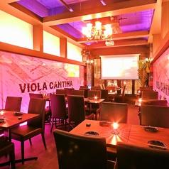 VIOLA CANTINA EL MEXICANO ビオラ キャンティーナ エル メキシカーノの雰囲気1