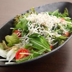 料理メニュー写真しらすと水菜のサラダ